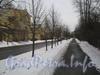 Общий вид пешеходной части ул. Белоусова по чётной стороне от дома 15 (слева) в сторону пр. Стачек. Фото февраль 2012 г.