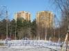 Ул. Лёни Голикова, дом 29 корпус 7 (слева) и корпус 8 (справа). Фото март 2012 г. с ул. Козлова (вид через парк Александрино).