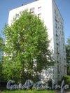 Ул. Танкиста Хрустицкого, дом 6. Общий вид со стороны дома 4. Фото 23 мая 2012 г.