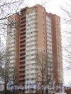 Ул. Седова, дом 60. Общий вид жилого дома. Фото ноябрь 2012 г.