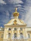 Разводная ул., дом 2. Большой Петергофский дворец. Вид со стороны верхнего парка. Фото май 2010 г.