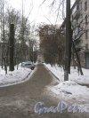 Ул. Лазо, дом 10. Проезд вдоль здания со стороны парадных в сторону пр. Наставников. Фото 22 января 2013 г.