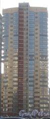 Ул. Доблести, дом 17, корпус 2, литера А. Общий вид с Ленинского пр. Фото 28 января 2013 г.