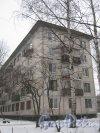 Ул. Лужская, дом 6. Общий вид со стороны дома 4, корпус 2. Фото 30 января 2013 г.