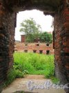Г. Выборг, ул. Сторожевой Башни, дом 6. Вид внутренней территории руин Кафедрального Собора. Фото 19 августа 2012 г.