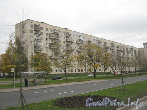 Ул. Доблести, дом 24, корпус 1. Общий вид. Фото 19 октября 2012 г.