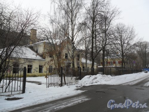 Перспектива Добрушской улицы. Заброшеный дом у обочины. Фото февраль 2013 г.