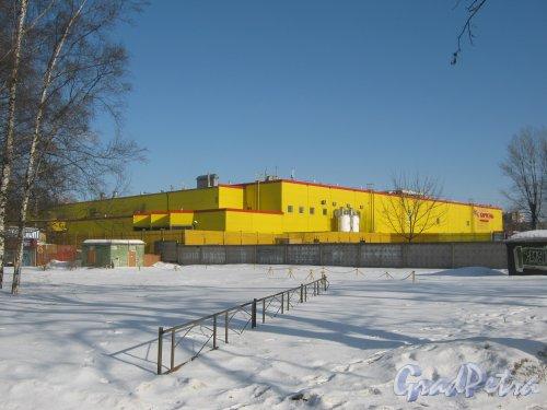 Ул. Карбышева, дом 9. Общий вид с Политехнической ул. Фото 10 марта 2013 г.