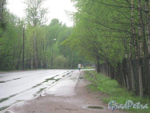 Лесопарковая улица в районе дома 4. Вид в сторону Рябовского шоссе. Фото 17 мая 2013 г.