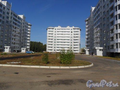 Г. г. Всеволожск, улица Доктора Сотникова, дом 3. Вид дома со двора. Микрорайон Южный. Фото 2011 года.
