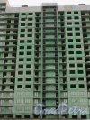 Кушелевская дорога, дом 1. Строительство жилого комплекса «Калина-парк». Фрагмент строящегося здания. Фото 30 ноября 2013 г.