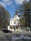 г. Пушкин, Дворцоваая ул., дом 1. Знаменская Церковь, арх. И.Я. Бланк, 1747, Фото май 2012 г.