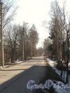 Перспектива Кооперативной улицы от улицы Вологдина в сторону Парнасной улицы. Фото апрель 2012 г.