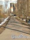 Перспектива Парнасной улицы от Кооперативной улицы в строну Старожиловской улицы. Фото апрель 2012 г.