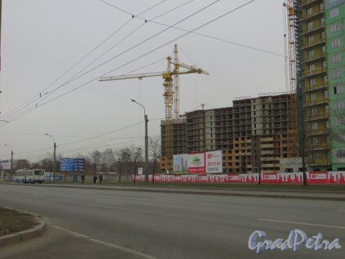 Кушелевская дорога, дом 5. Строительство жилого комплекса «Калина-парк». Фото 30 ноября 2013 г.