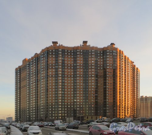 Пос. Парголово, Заречная ул., дом 25, корп. 2. Один из корпусов жилого комплекса «Северная долина». Фото 30 ноября 2013 г.