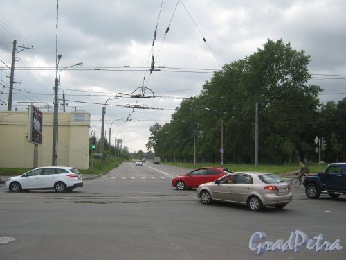 Гранитная ул. Перспектива от Новочеркасского пр. в сторону Малоохтинского пр. Фото 23 июля 2013 г.