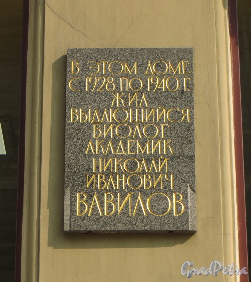 Малая Морская улица, дом 10. Мемориальная доска Вавилову Н.И. Фото 5 августа 2013 года.