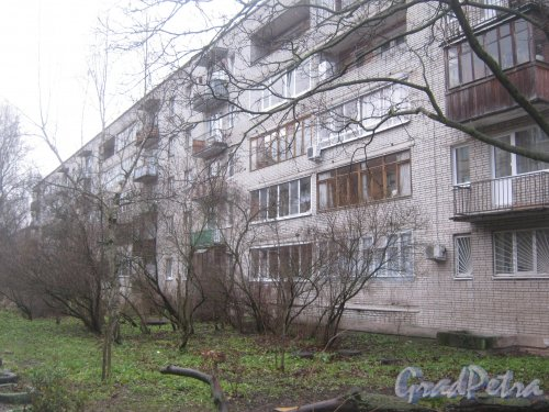 Лен. обл., Гатчинский р-н, г. Гатчина, ул. Киргетова, дом 13. Вид со стороны двора. Фото 24 ноября 2013 г.