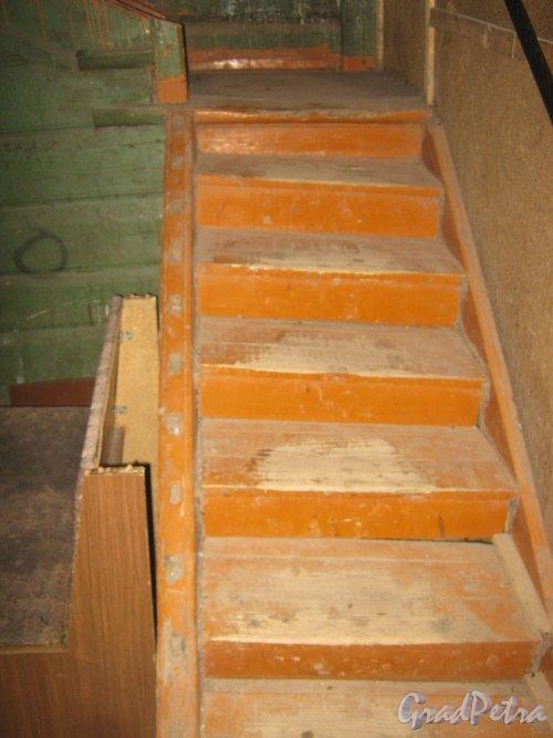 Лен. обл., Гатчинский р-н, г. Гатчина, ул. Урицкого, дом 29. Парадная внутри. Лестница с 1 на 2 этаж. Фото 24 ноября 2013 г.