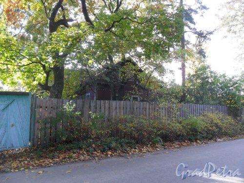 Староорловская улица, дом 10. Фото 2 октября 2013 года.