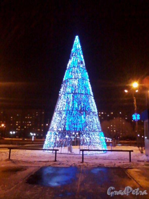 Ул. Маршала Казакова. Радиорынок «Юнона». Новогодняя ёлка. Фото январь 2014 г. (вечер).
