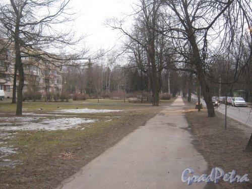 Г. Пушкин, ул. Жуковско-Волынская в районе дома 4 по ул. Глинки. Вид в сторону Софийского бульвара. Фото 1 марта 2014 г.