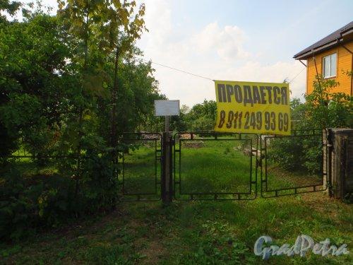 Лен. обл., Гатчинский р-н, Антропшинская улица, дом 143. Общий вид участка. Фото 29 июня 2014 года.