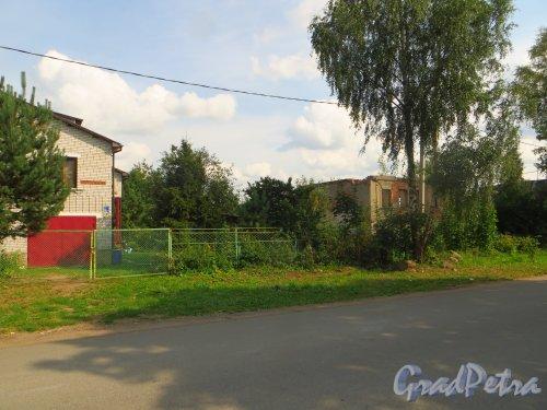 Лен. обл., Гатчинский р-н, Антропшинская улица, дом 214. Общий вид участка. Фото 29 июня 2014 года.