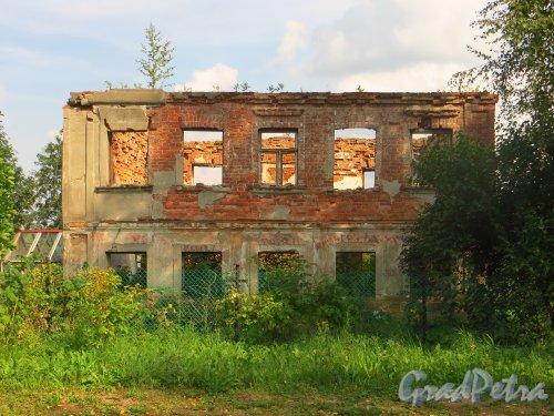 Лен. обл., Гатчинский р-н, Антропшинская улица, дом 220. Развалины здания. Фото 29 июня 2014 года.
