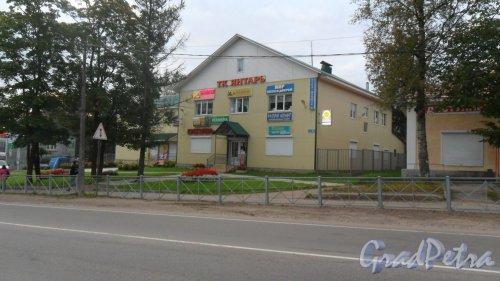 Поселок Рощино, Железнодорожная улица, дом 61,литер А. Торговый комплекс