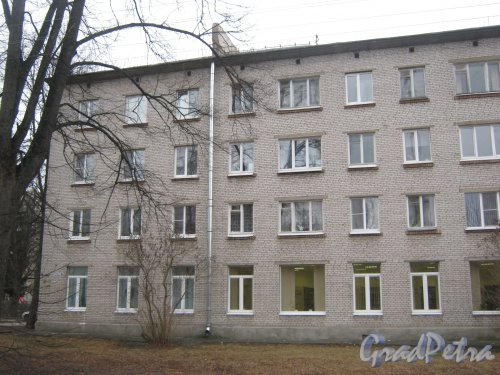 г. Павловск, ул. 1-го Мая, дом 6. Фрагмент фасада. Фото 5 марта 2014 г.