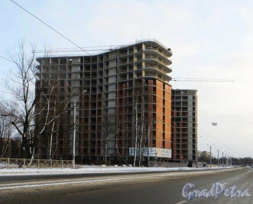 Строительство первых корпусов жилого комплекса «Пять Звёзд». Фото 5 января 2015 года.