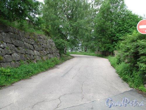 Г. Выборг, ул. Некрасова. Вид на улицу по слону Батарейной горы от Батарейной улицы. Фото июнь 2014 г.