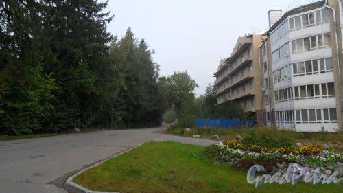 Выборгский р-н, посёлок Рощино, перспектива Садовой улицы.
