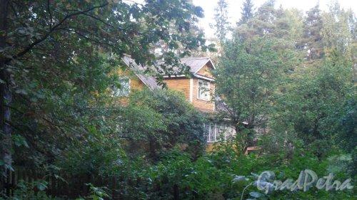Лен. область, Всеволожский р-н, город Всеволожск, Баркановская улица, дом 19. Фото 15 сентября 2015 года.