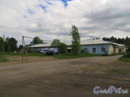 Ленинградская область, Всеволожский район, деревня Васкелово. Общий вид территории у дома 31 по Автоколонной улице. Фото 2 июня 2015 года.