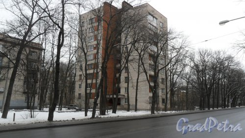 Новороссийская улица, дом 40. 9-этажный жилой дом серии 1-528кп40 1966 года постройки. 1 парадная, 45 квартир, из них 18 1-комнатных квартир, 18 2-комнатных квартир и 9 3-комнатных квартир. Фото 19 февраля 2016 года.