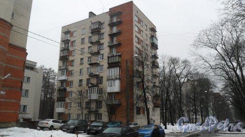 Новороссийская улица, дом 24. 9-этажный жилой дом серии 1-528кп40 1966 года постройки. 1 парадная, 45 квартир. Фото 6 февраля 2016 года.