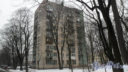 Новороссийская улица, дом 22, корпус 2. 9-этажный жилой дом серии 1-528кп40 1965 года постройки. 1 парадная, 45 квартир. Фото 6 марта 2016 года.
