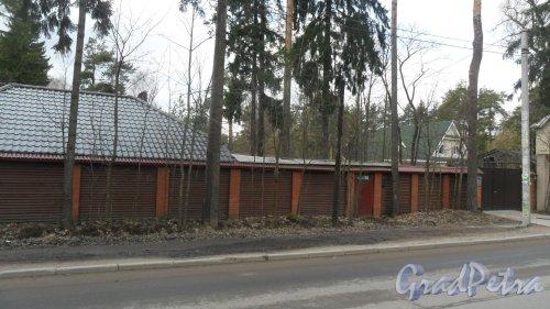 Всеволожск, проспект Грибоедова, дом 16А. Фото 25 апреля 2016 года.