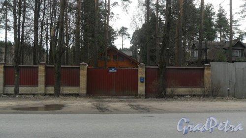 г. Всеволожск, улица Пушкинская, дом 24. Фото 25 апреля 2016 года.