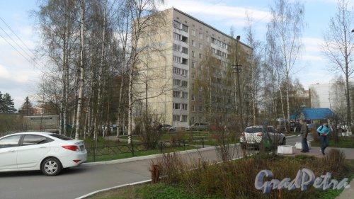 Всеволожск, улица Ленинградская, дом 5. 9-этажный жилой дом 121 серии 1988 года постройки. 2 парадные, 72 квартиры. Фото 30 апреля 2016 года.