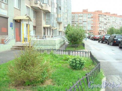 улица Веденеева, дом 2. Двор жилого дома. Фото 2016 года.