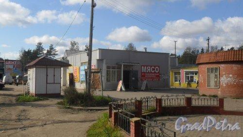 Всеволожск, улица Советская, дом 2Б. Торговый павильон. Мясной магазин и шаверма. Фото 20 сентября 2016 года.