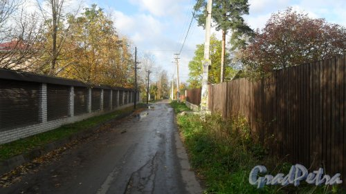 Всеволожск, перспектива Сергиевской улицы