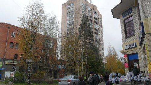 Всеволожск, уоица Межевая, дом 18. 16-этажный жилой дом серии 1-528кп82 1990 года постройки. 1 парадная, 110 квартир. Фото 11 октября 2016 года.