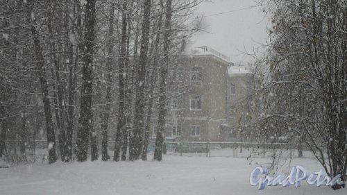 Всеволожский район, поселок имени Морозова, улица Хесина, дом 11. Начальная школа поселка имени Морозова, (81370)3-62-42. Фото 5 ноября 2016 года, сказочный снегопад, запечатленный в вечность.