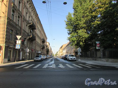 Перспектива 5-ой Красноармейской улицы от Московского проспекта. Фото 22 августа 2016 года.