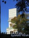 Фермская дорога (Пушкин), д. 2. Павильон Белая башня, 1821-27, арх. А.А. Менелас. Вид из-за бастионов. фото октябрь 2015 г.